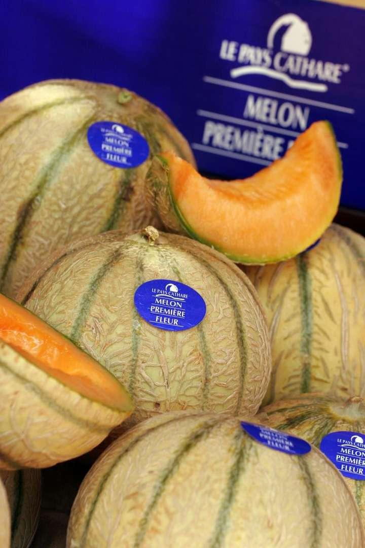 melon du pays cathare