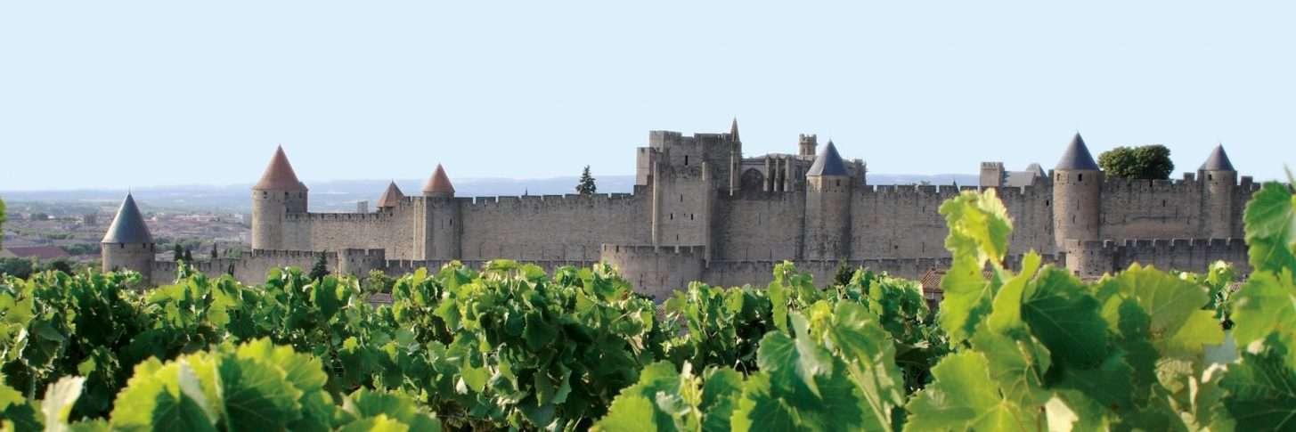 Vue sur la Cité de Carcassonne depuis les vignes ©Mairie de Carcassonne