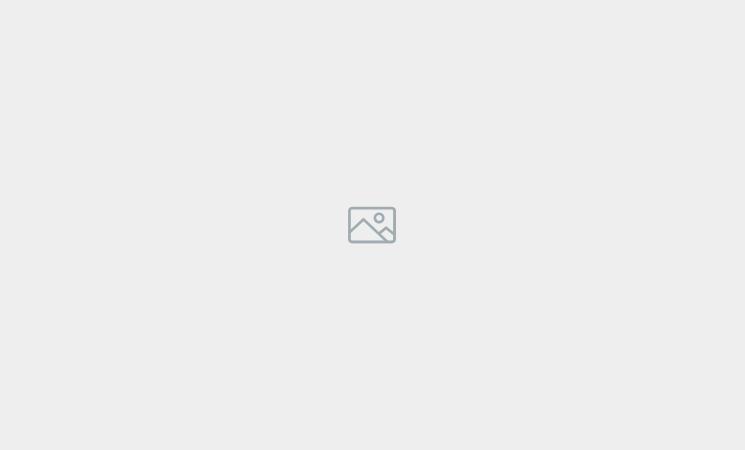 Domaine provincial d'Hélécine - Château