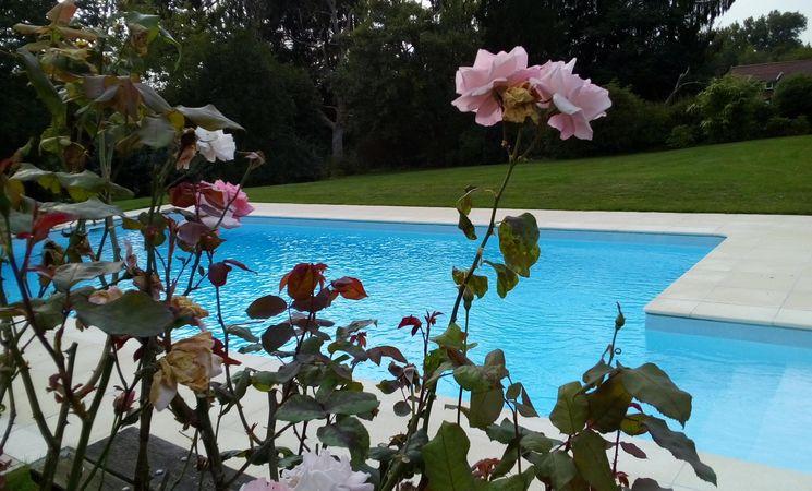 Le Cheniat - piscine