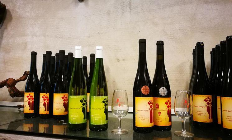 Vignoble de l'Abbaye de Villers-la-Ville 3