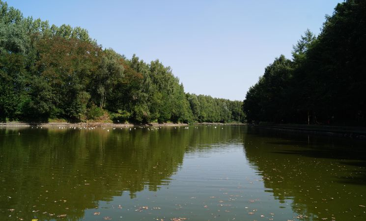 Bois des Bruyères - Waterloo 27 © FTBW