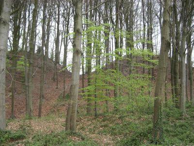Monts de Braine-le-Château