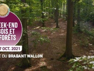 Week-end du Bois et des Forêts au Domaine Régional Solvay