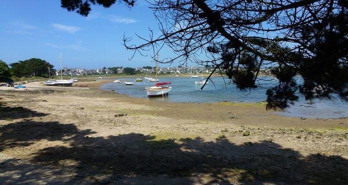 Randonnée Ile Grande Pleumeur Bodou (3)