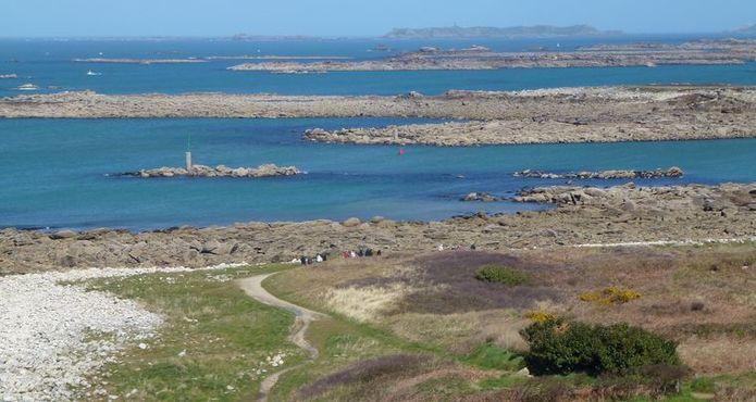 Randonnée Ile Grande Pleumeur Bodou (6)