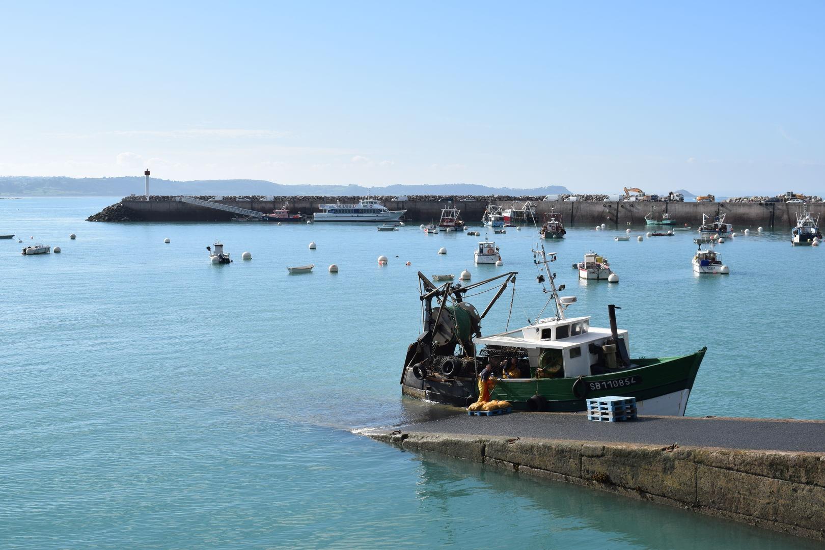 Découvrir la pêche en baie de Saint-Brieuc