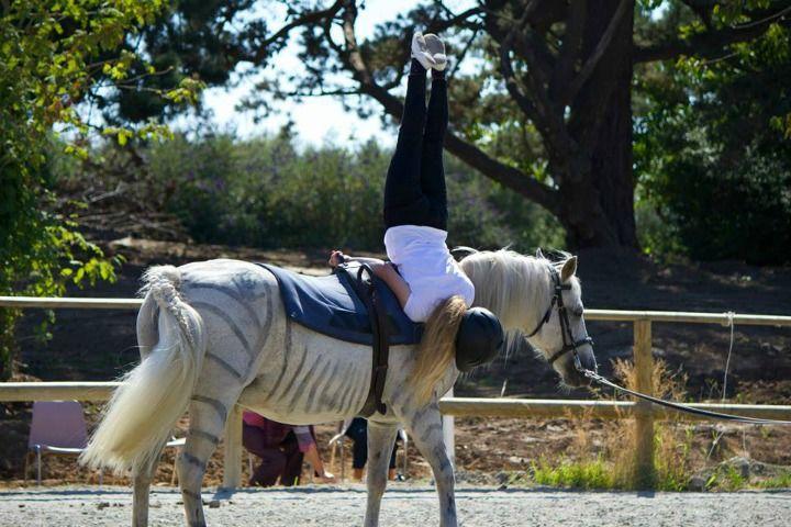 Lannion Equitation 3