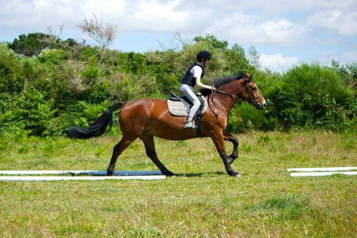 Lannion Equitation 4