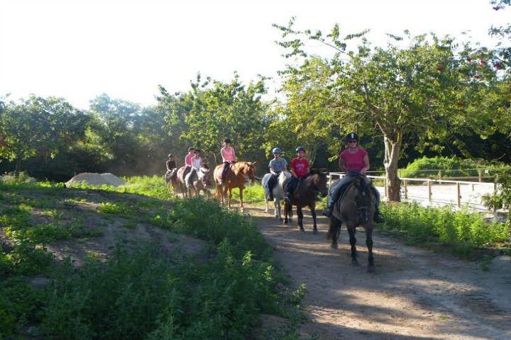 Lannion Equitation