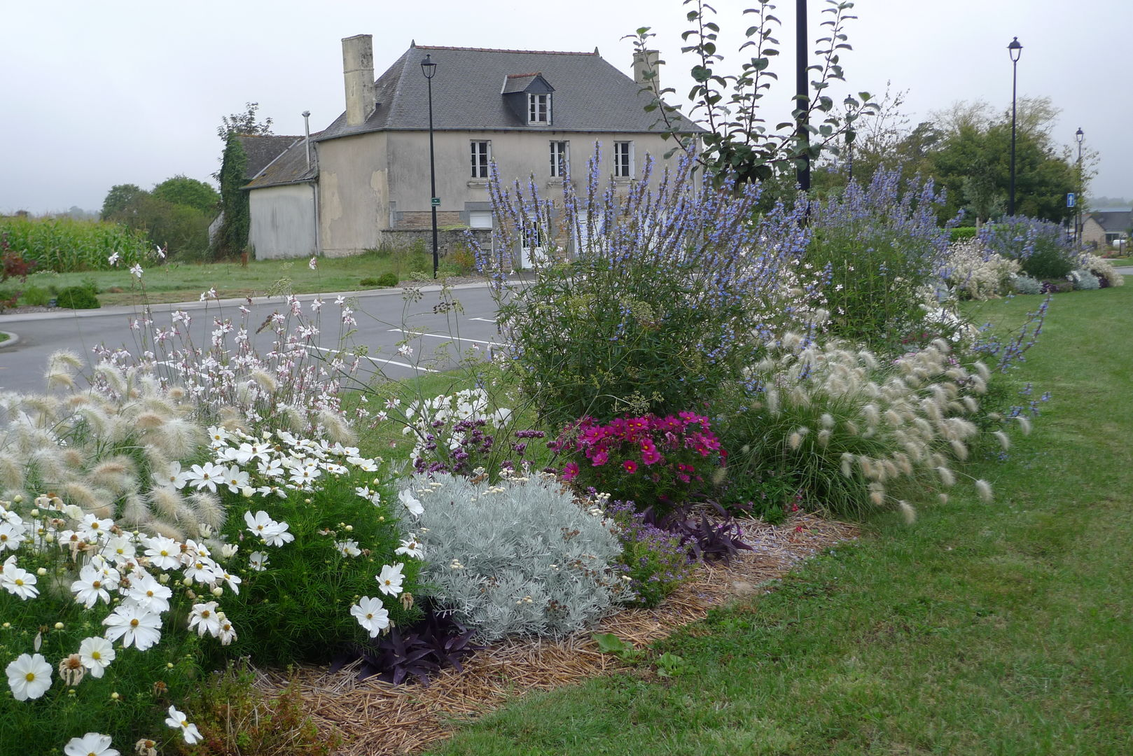 Saint-Launeuc crédit photos C.Hamon-Rondo (8)