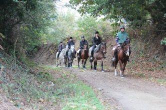centre-equestre-le-syet 2019-1