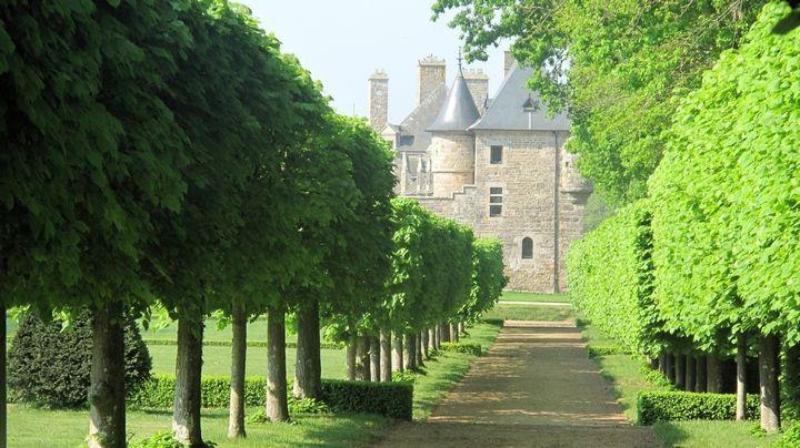 château Rosanbo Le Parc - Allée de Tilleuls