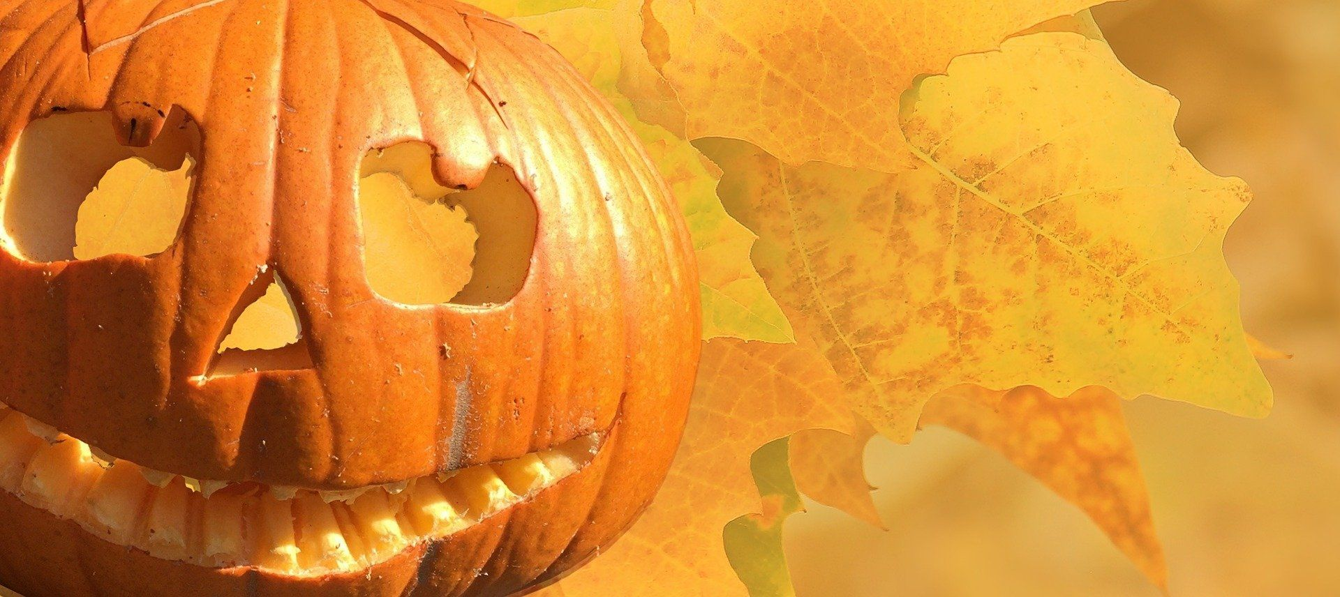 halloween-2901944_1920