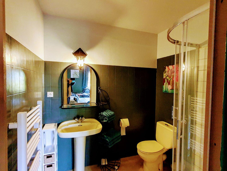 location gite paimpol salle d'eau tulipe