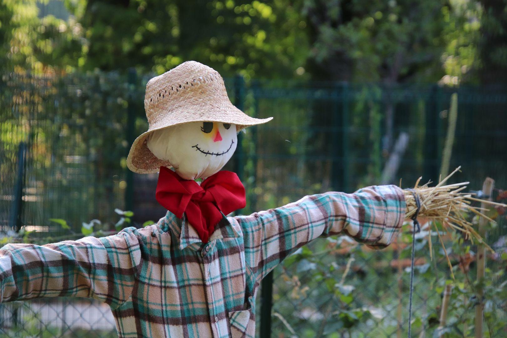 scarecrow-4365038_1920