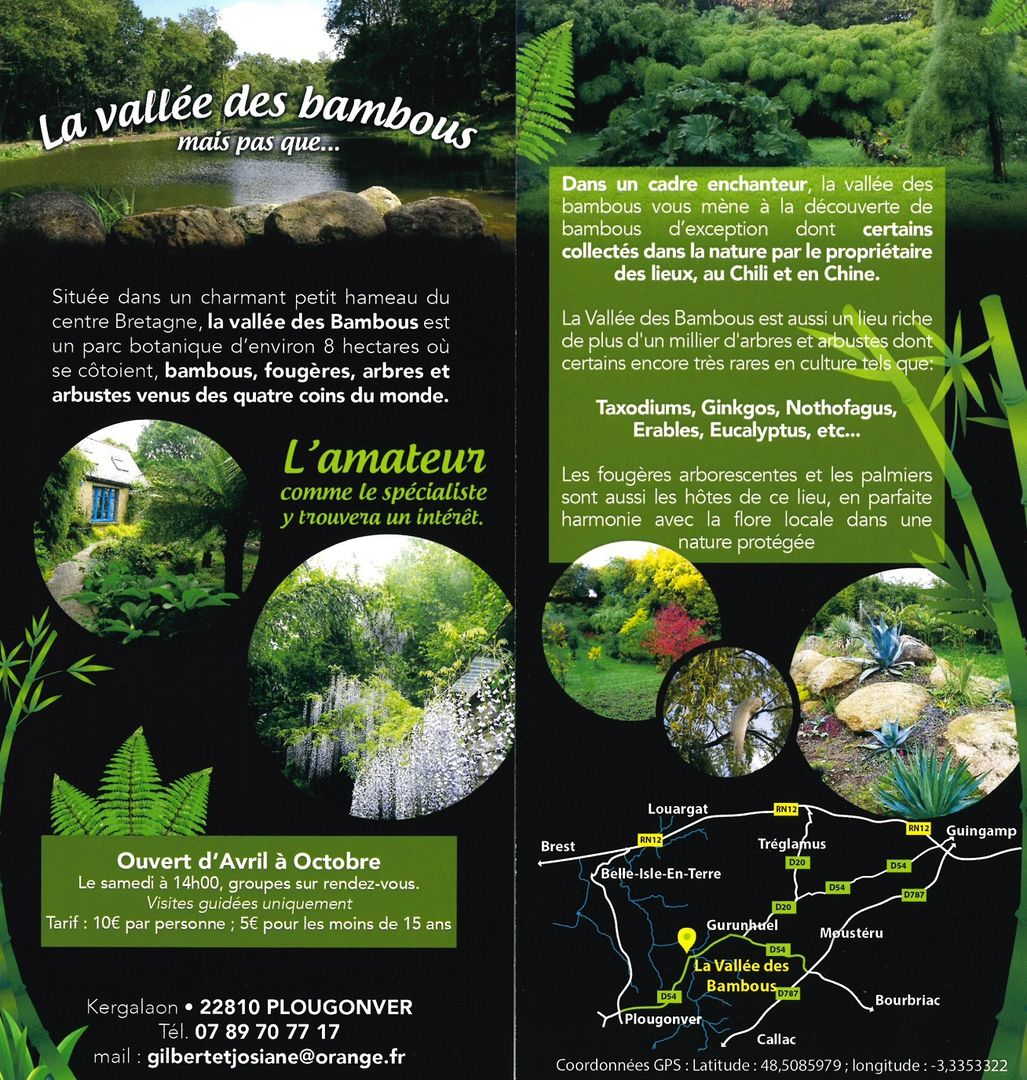 vallee-des-bambous