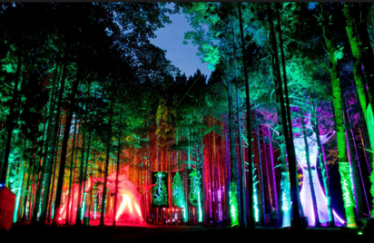 Trail nocturne