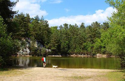 Forêt Départementale d'Avaugour-Bois Meur
