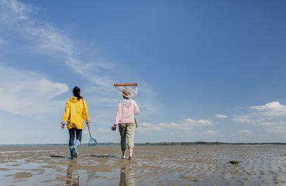 Grandes marées et pêche à pied