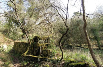 La vallée du Lizildry
