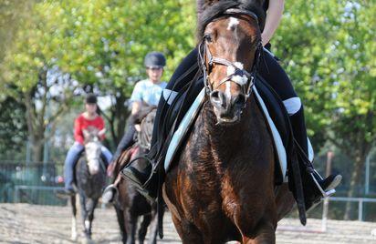 Centre Equestre Equi 22