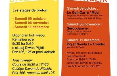 Stage de breton