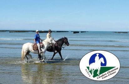 À cheval la traversée de la Baie de Saint-Brieuc