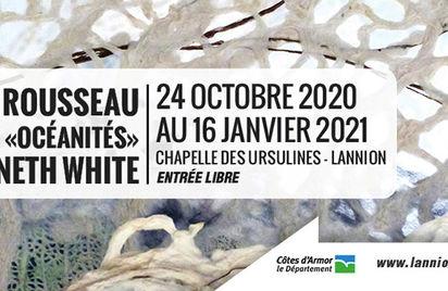 Dominique Rousseau - Exposition