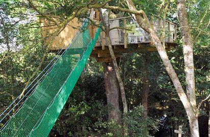 Cabanes dans les arbres Manoir du Reposoir