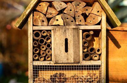Des maisons pour les insectes
