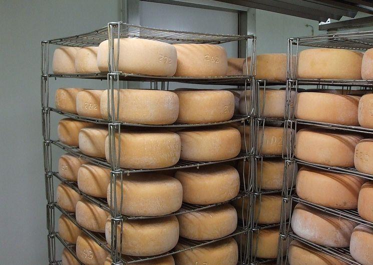 Fromage de brebis au lait cru