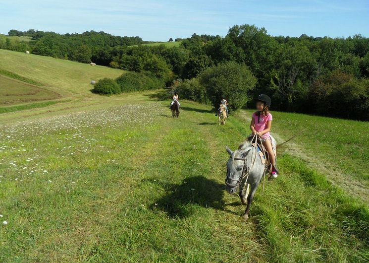Pilgrim Trail Ranch