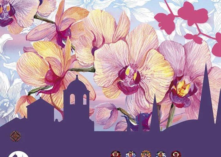 Orchidées à Fontfroide 2021