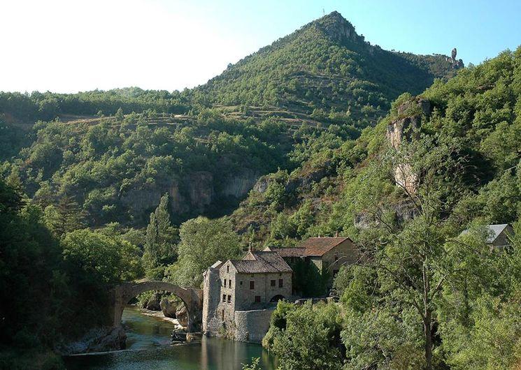 Gorges de la Dourbie - Le Moulin de Corp