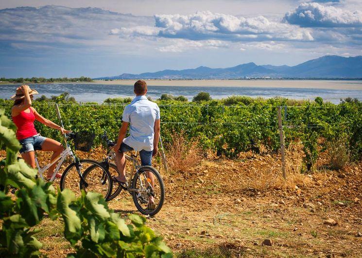 Terre, mer, ville : échappée épicurienne à vélo en Roussillon