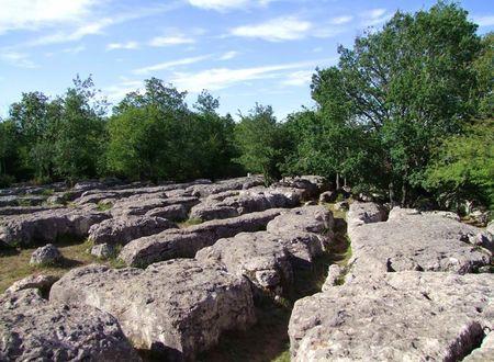 Le Sentier du Labyrinthe Vert