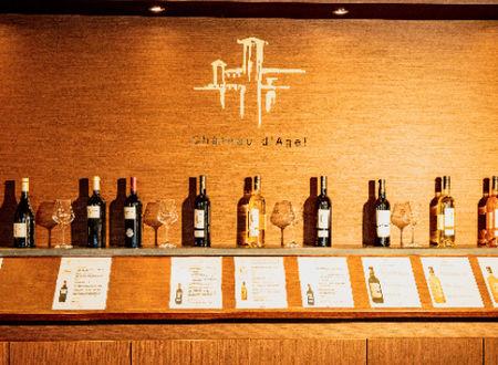 Boutique de château - Offre sur l'achat de 12 bouteilles
