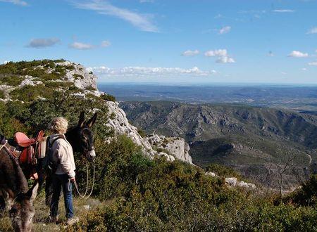 Itinérance avec un âne, entre Cévennes et Méditerranée