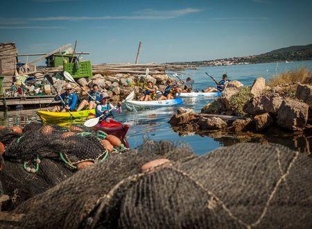 Explorez Sète, la « Venise du Languedoc », en kayak de mer