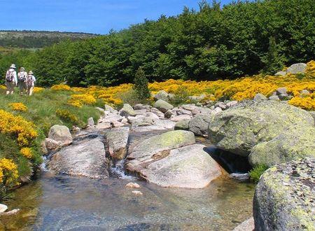 Séjour randonnée et balnéo sur le Mont-Lozère