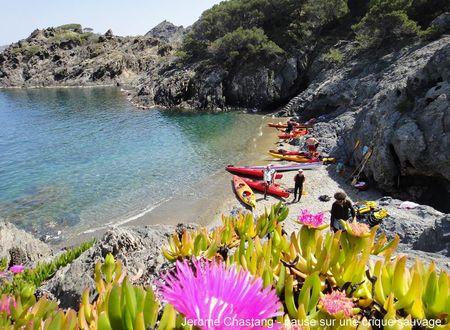 Collioure et la Côte Vermeille... en kayak !
