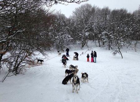 Aubrac aventure : Séjour hiver multi-activités en famille