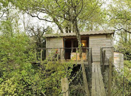 Céleste, une cabane perchée en Quercy Blanc