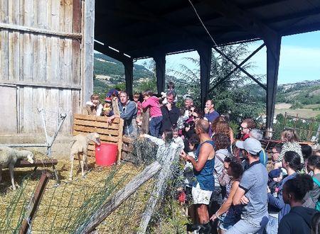 Ferme de Pinet, visite d'un élevage de brebis en agroécologie