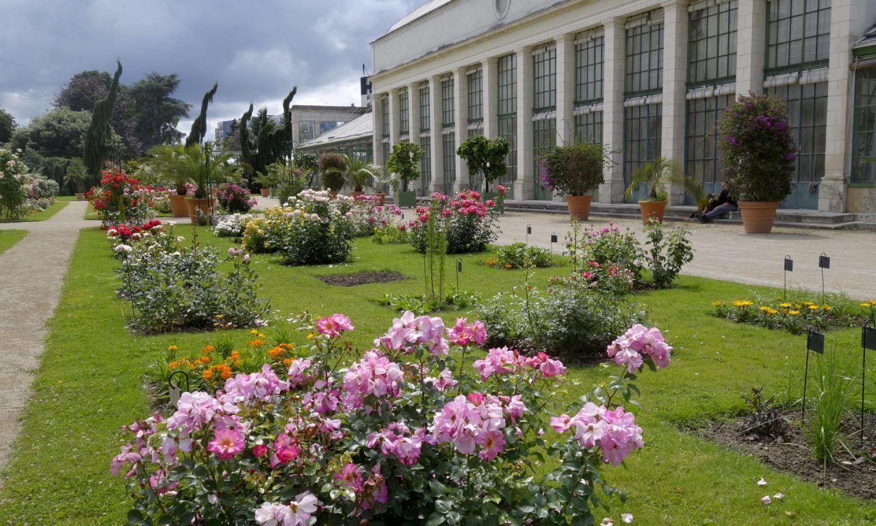 Le Jardin Des Plantes Orleans Tourisme Loiret