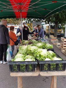 Fay-aux-Loges Market