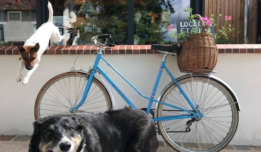 La Maison du Pont Canal - Location de vélos