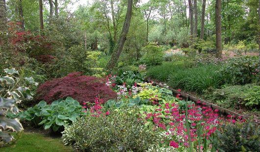 Jardin Arboretum d'Ilex