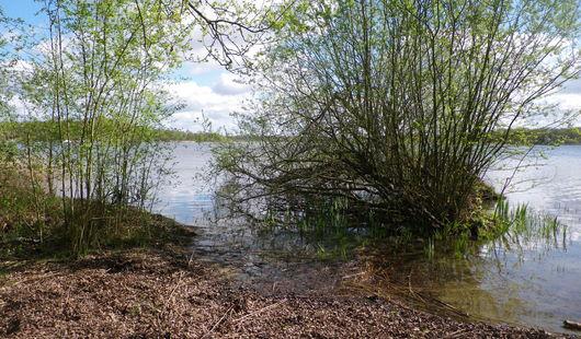Parc Naturel Départemental - L'étang du puits